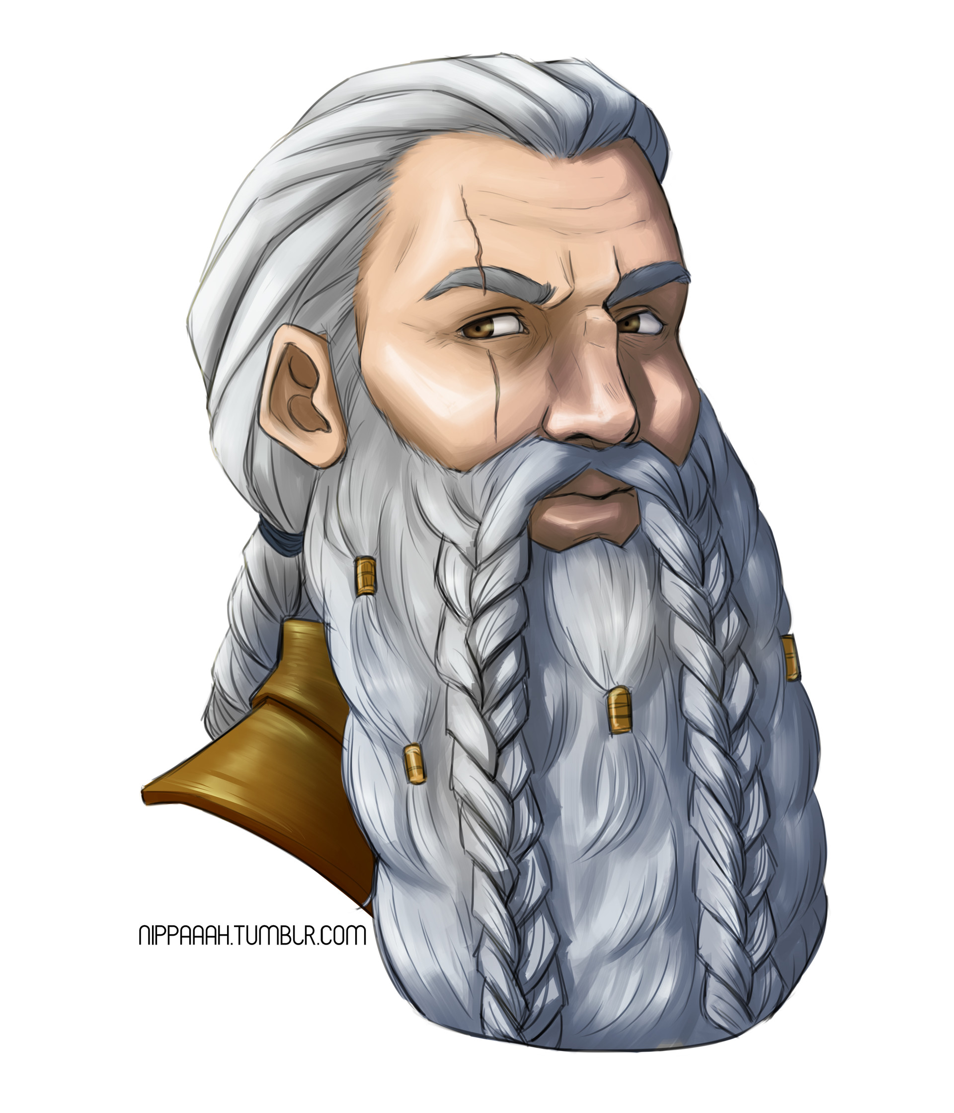 Peritok Bronzehammer, Dwarf, Palladin, lawful good