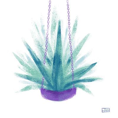 Agnieszka blaszczak palma2