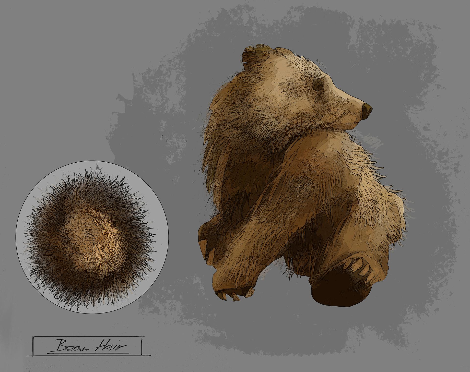 martin treschl bear hair brush