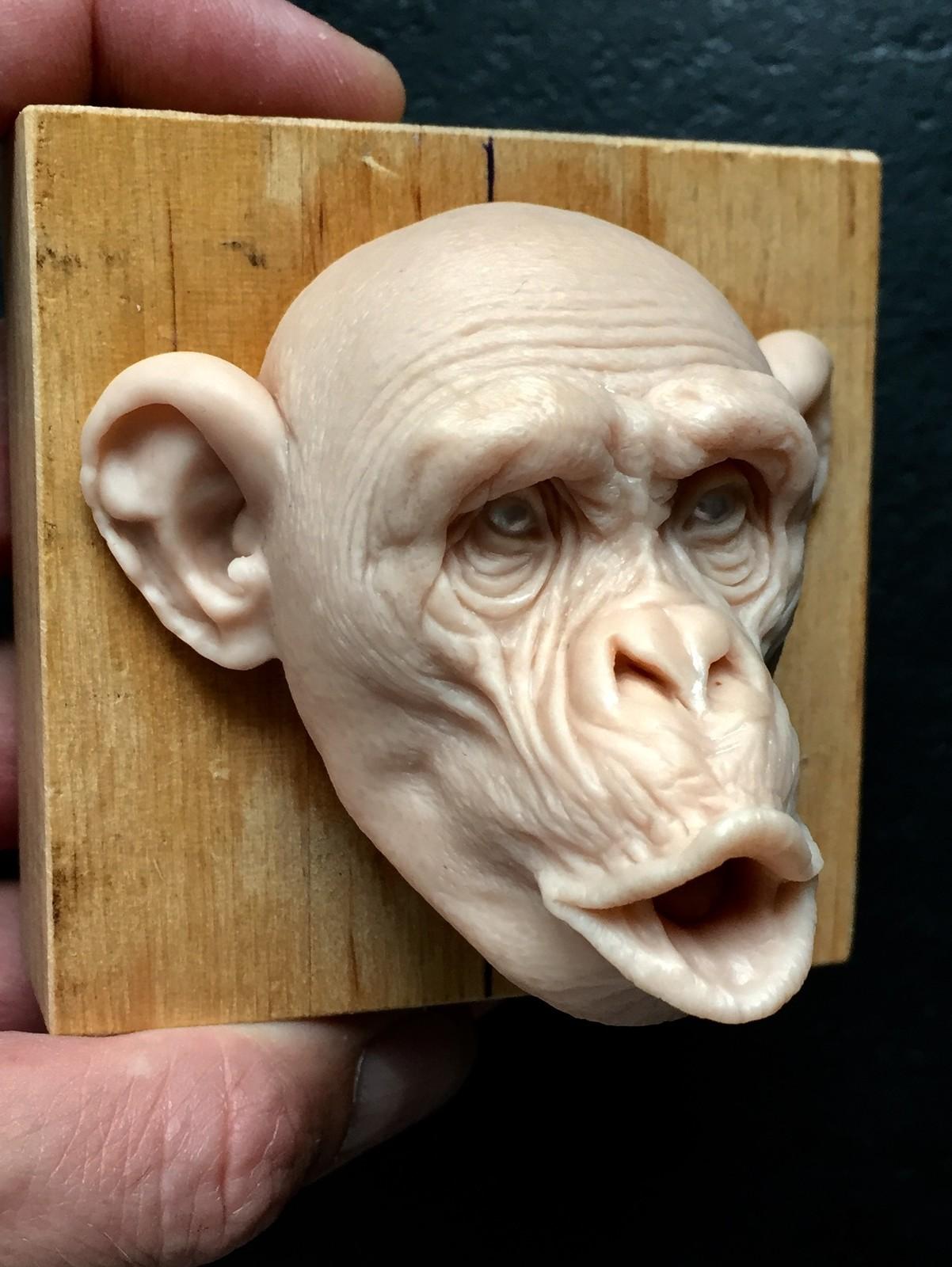 Monkey/super sculpy/