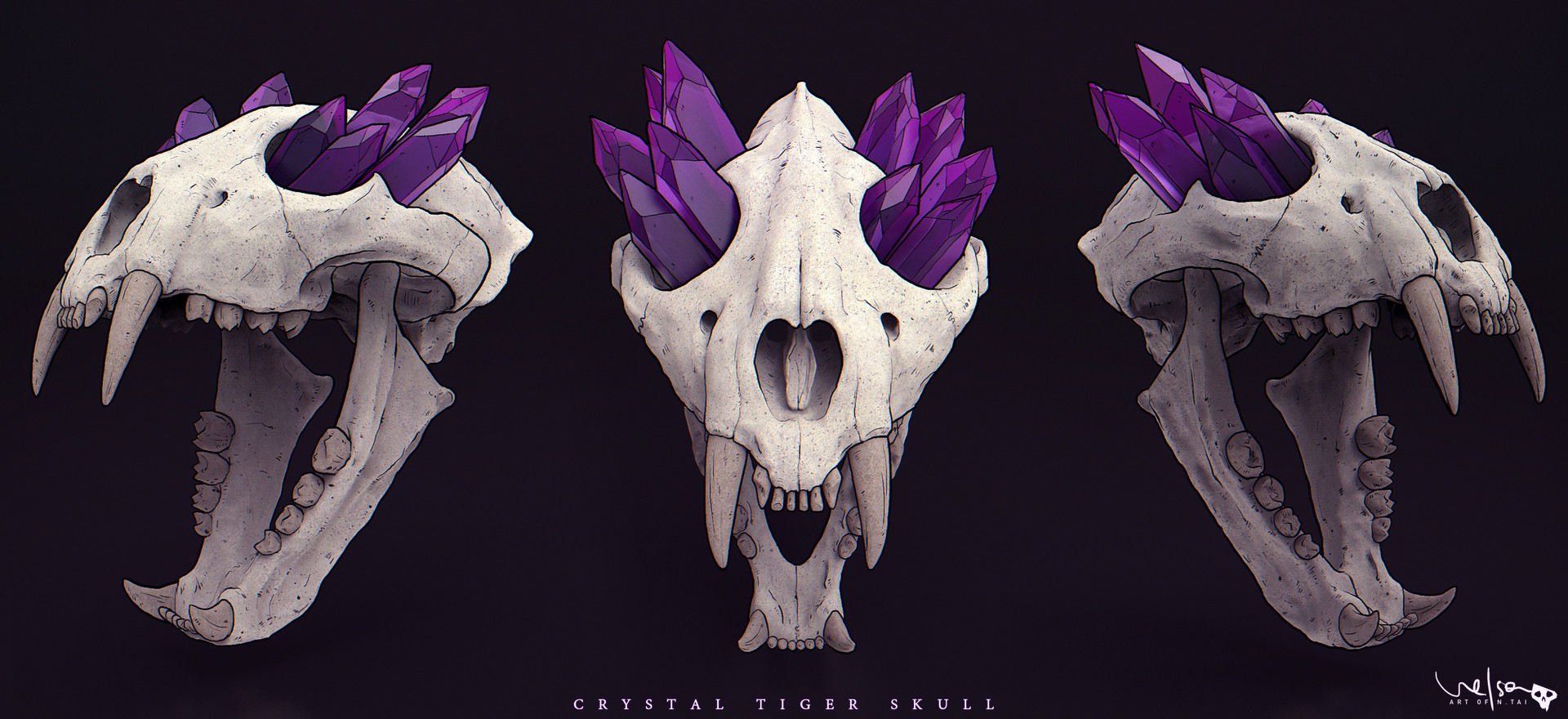 Nelson tai crystaltigerskull dsgn 001a