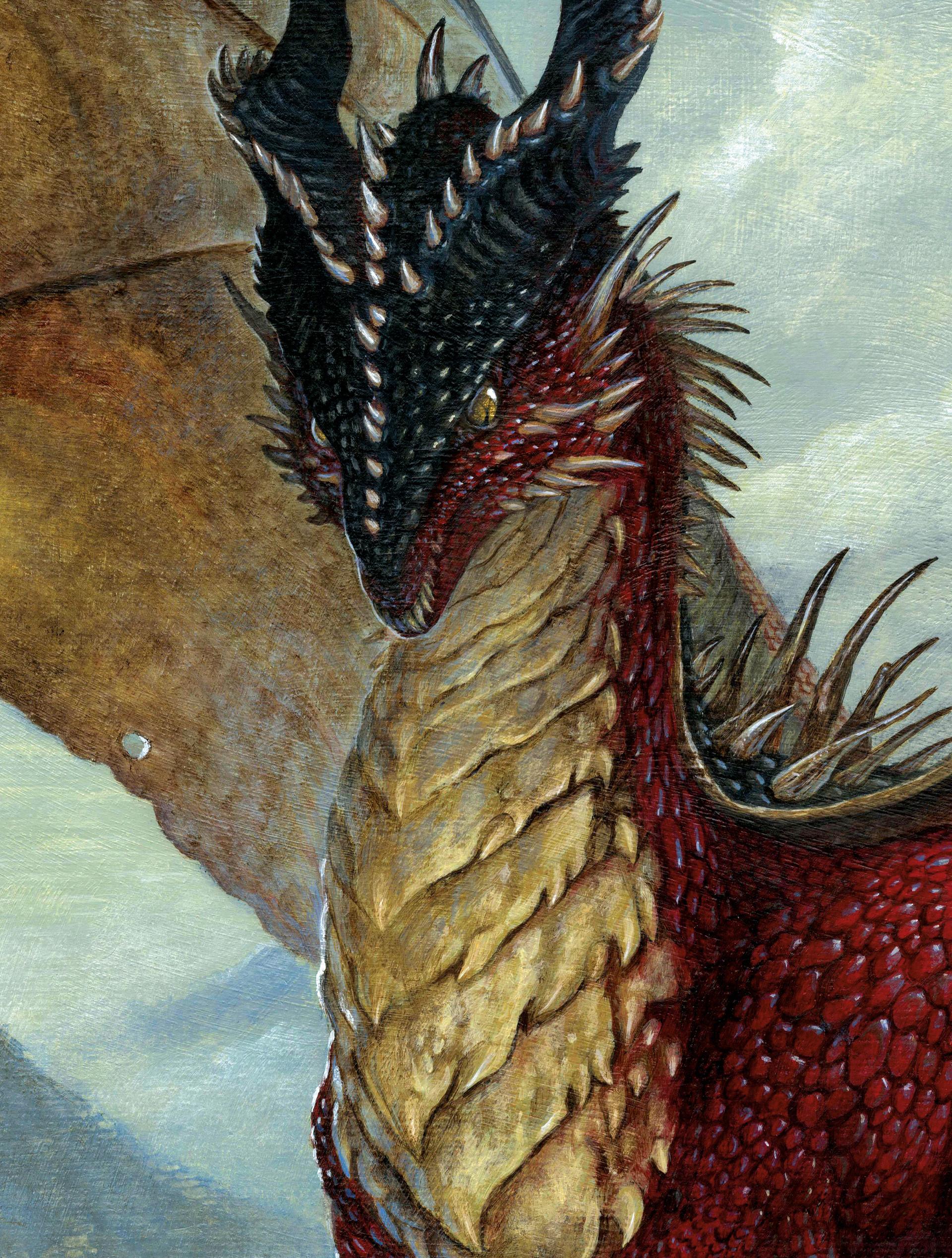 Loic canavaggia dragon lecteur2