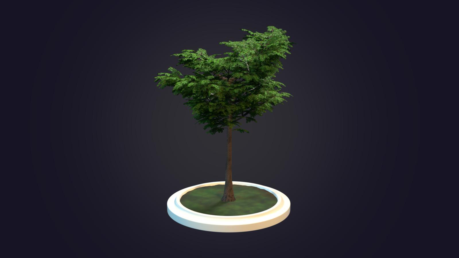 Own creation tree