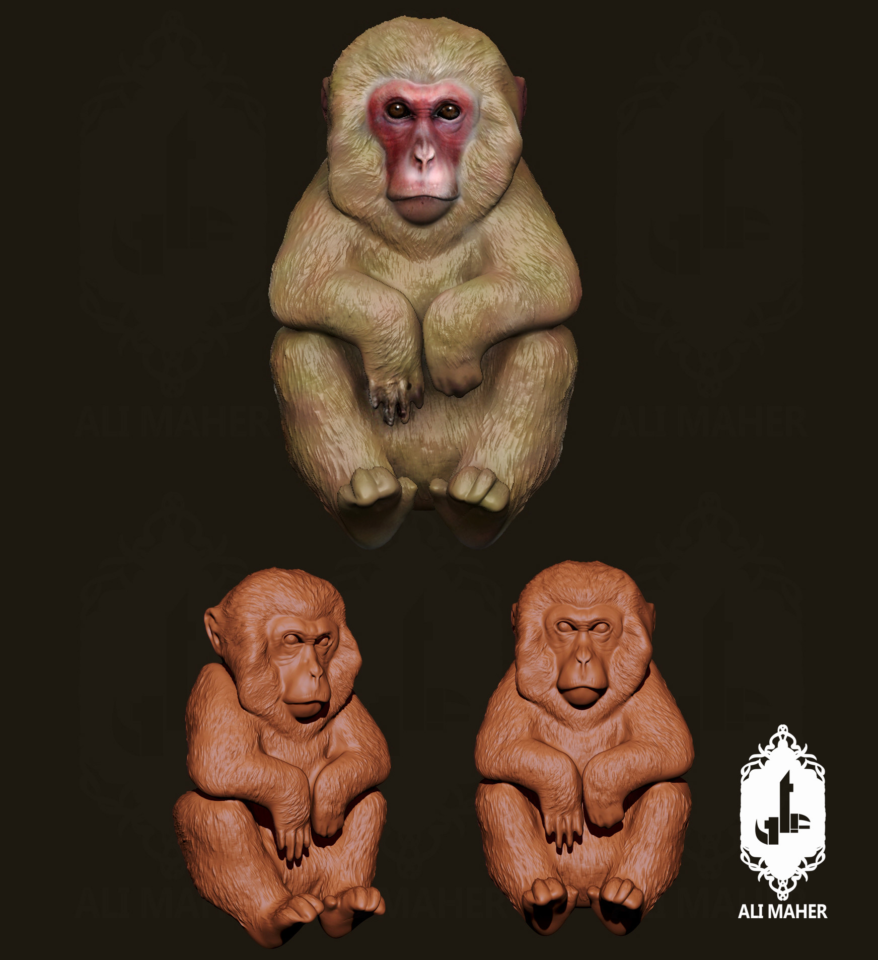 Ali maher all monkey alimaher