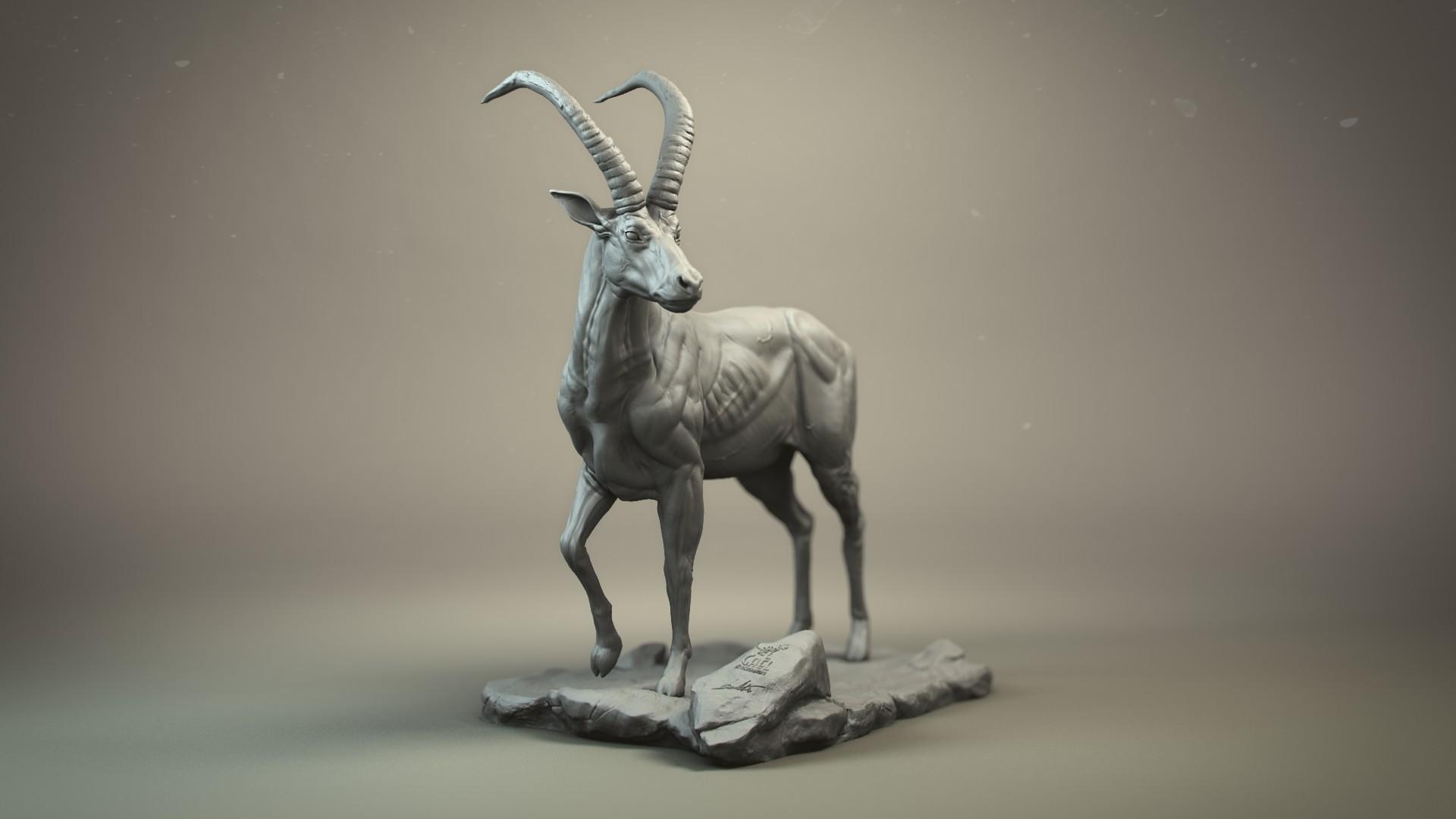 Gael kerchenbaum antelope 0004