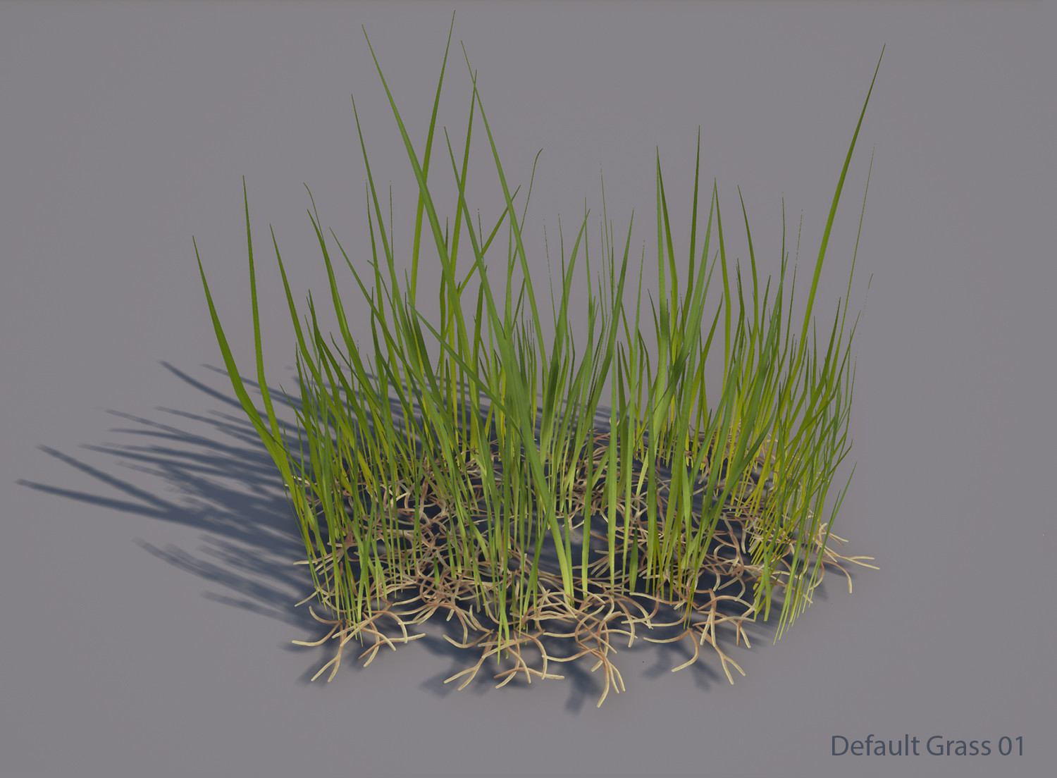 Christoffer radsby default grass 01