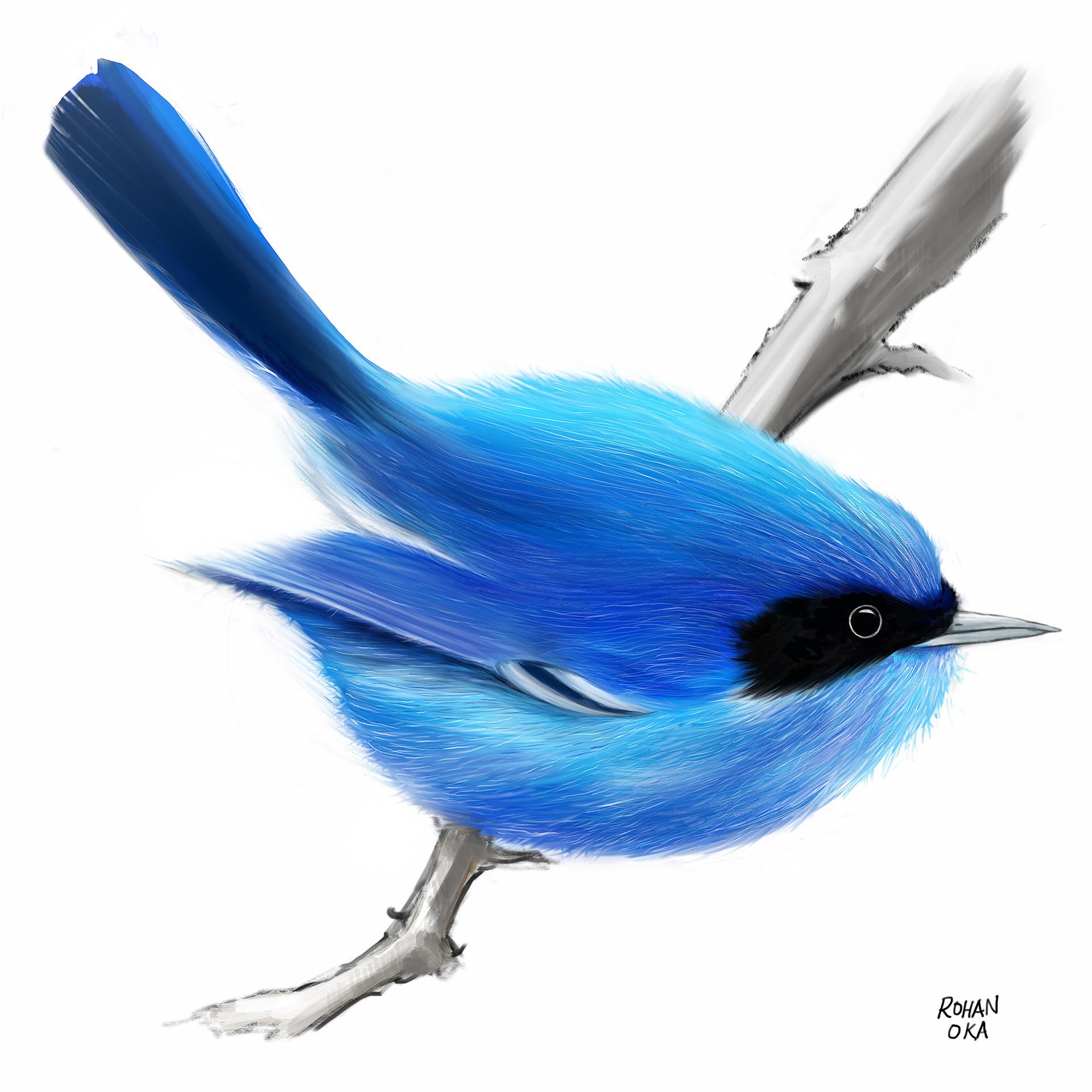 Rohan oka bird