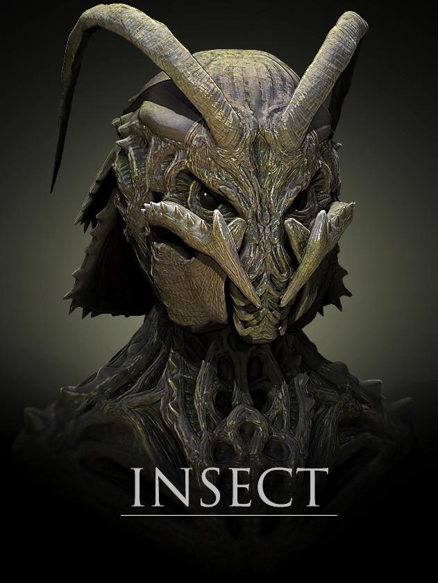 Takuto mizuno insect6