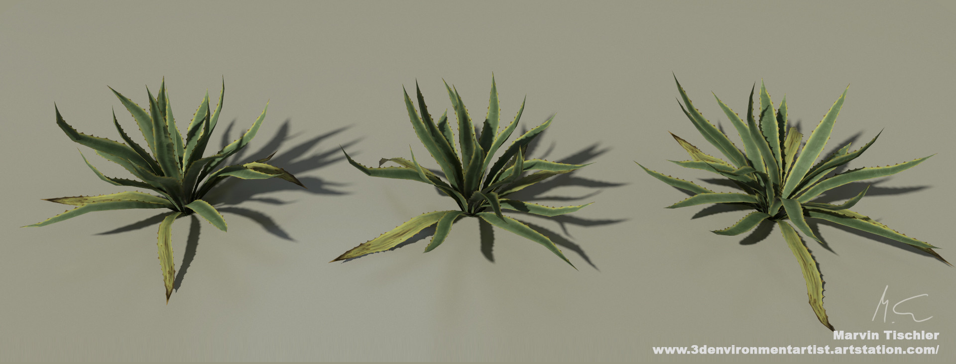 Marvin tischler plants 001 g