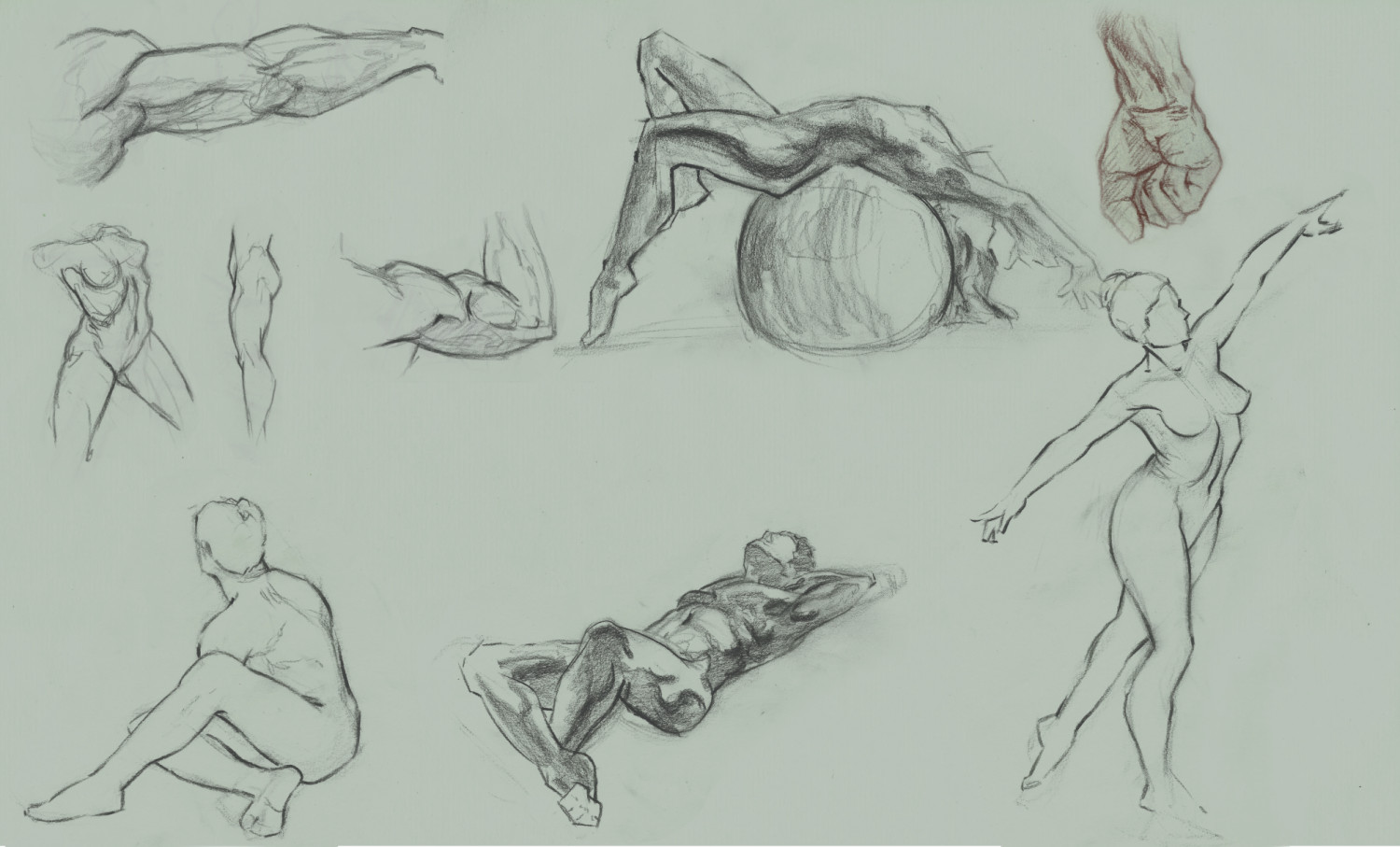 Quick anatomy studies using charcoal pencil