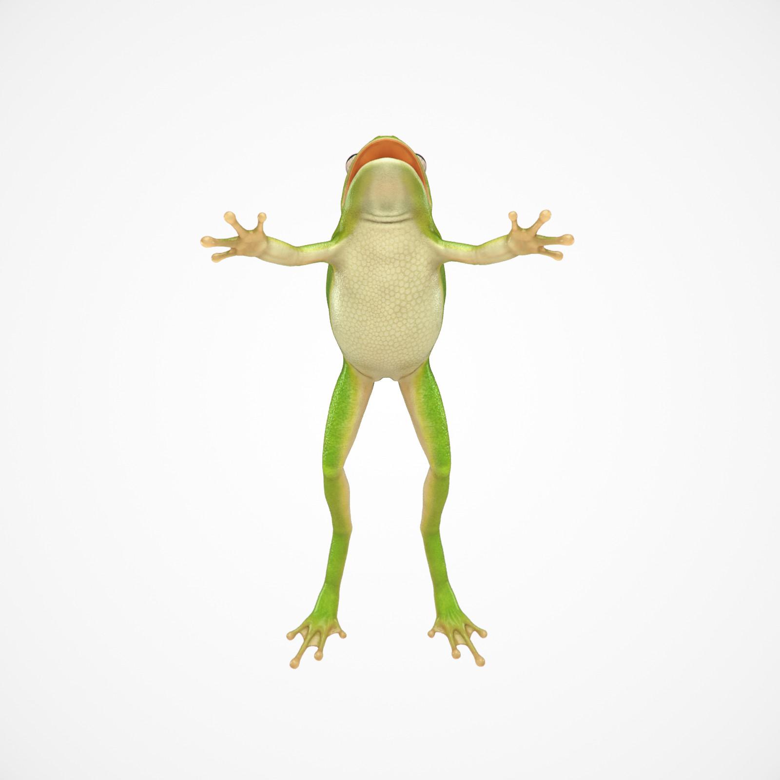 Cgmonkeyking fd kps frog test02 pn01 pp 0004