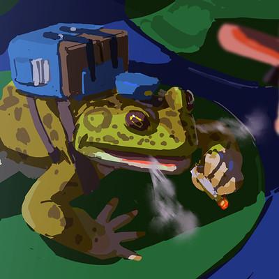 Devin platts frog lillypadjumper