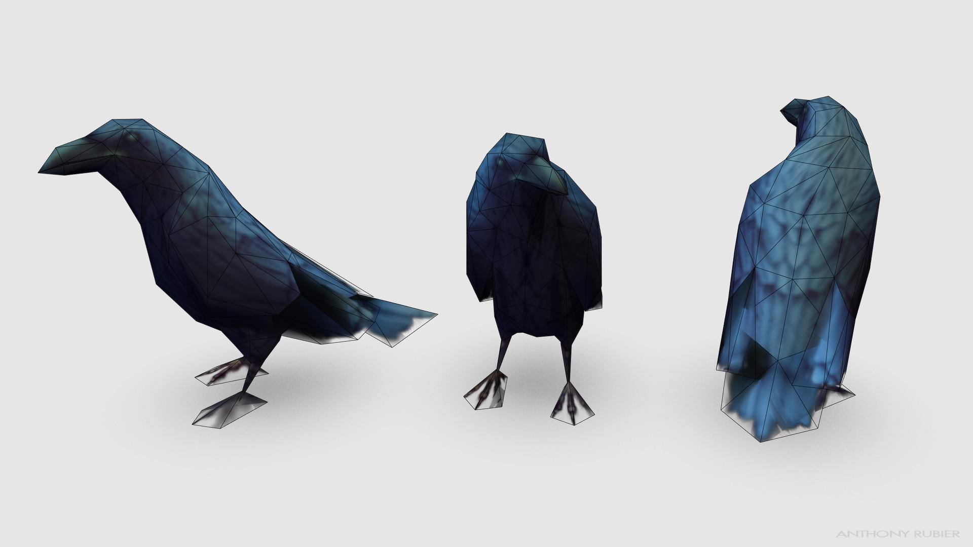 Anthony rubier render mesh corbeau 2