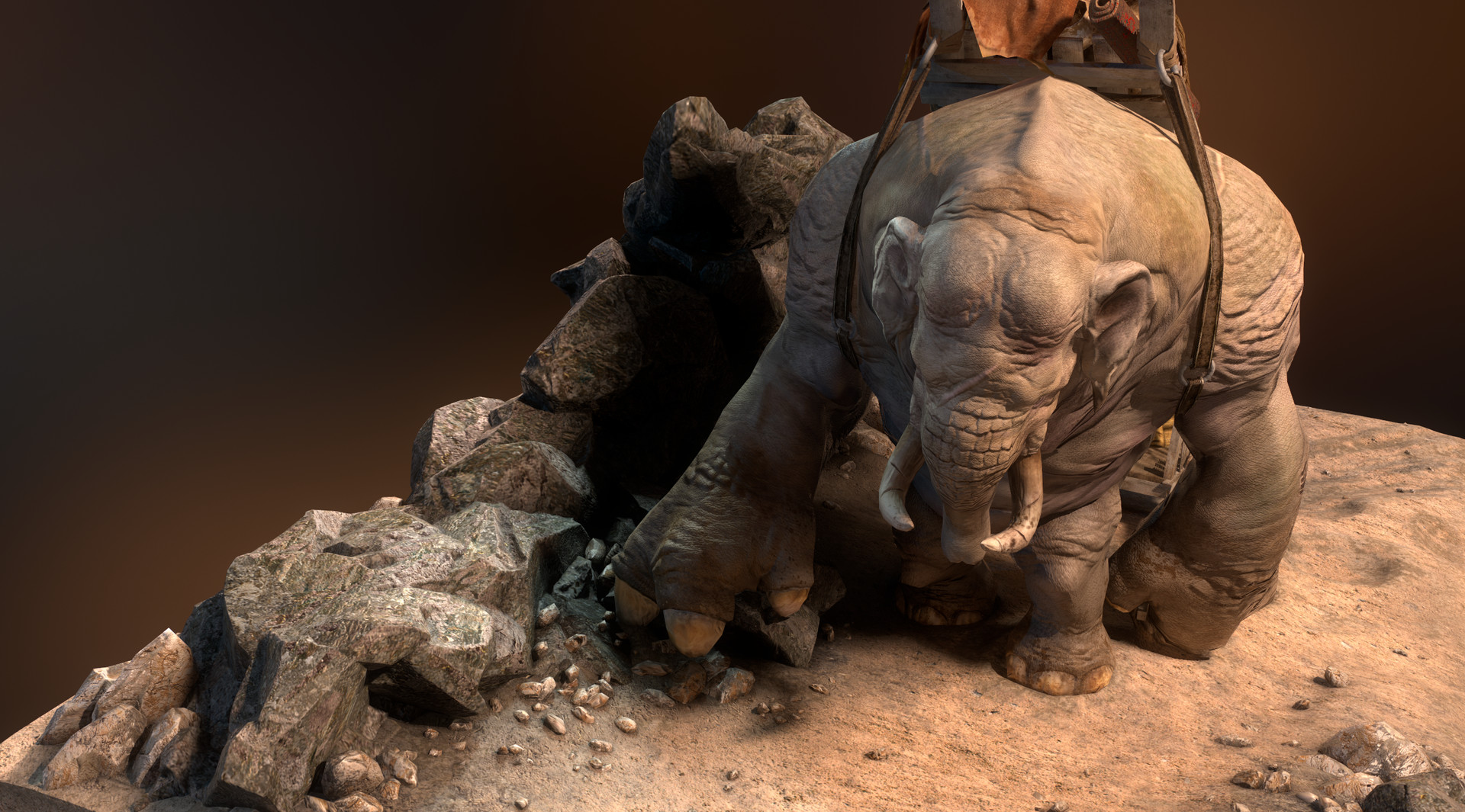 Daniel s rodrigues elephant beauty 004