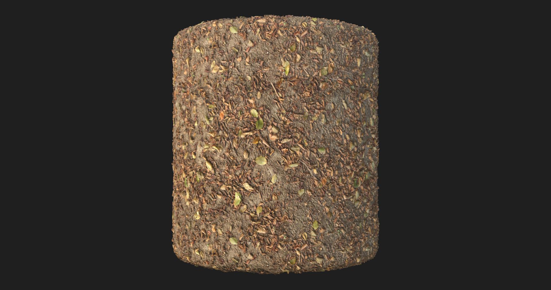 Martin pietras martin pietras rend 01 1