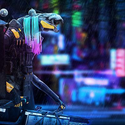 TGR5 | neon rain