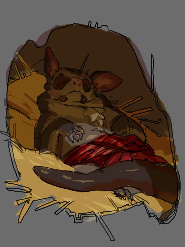 bonus possum