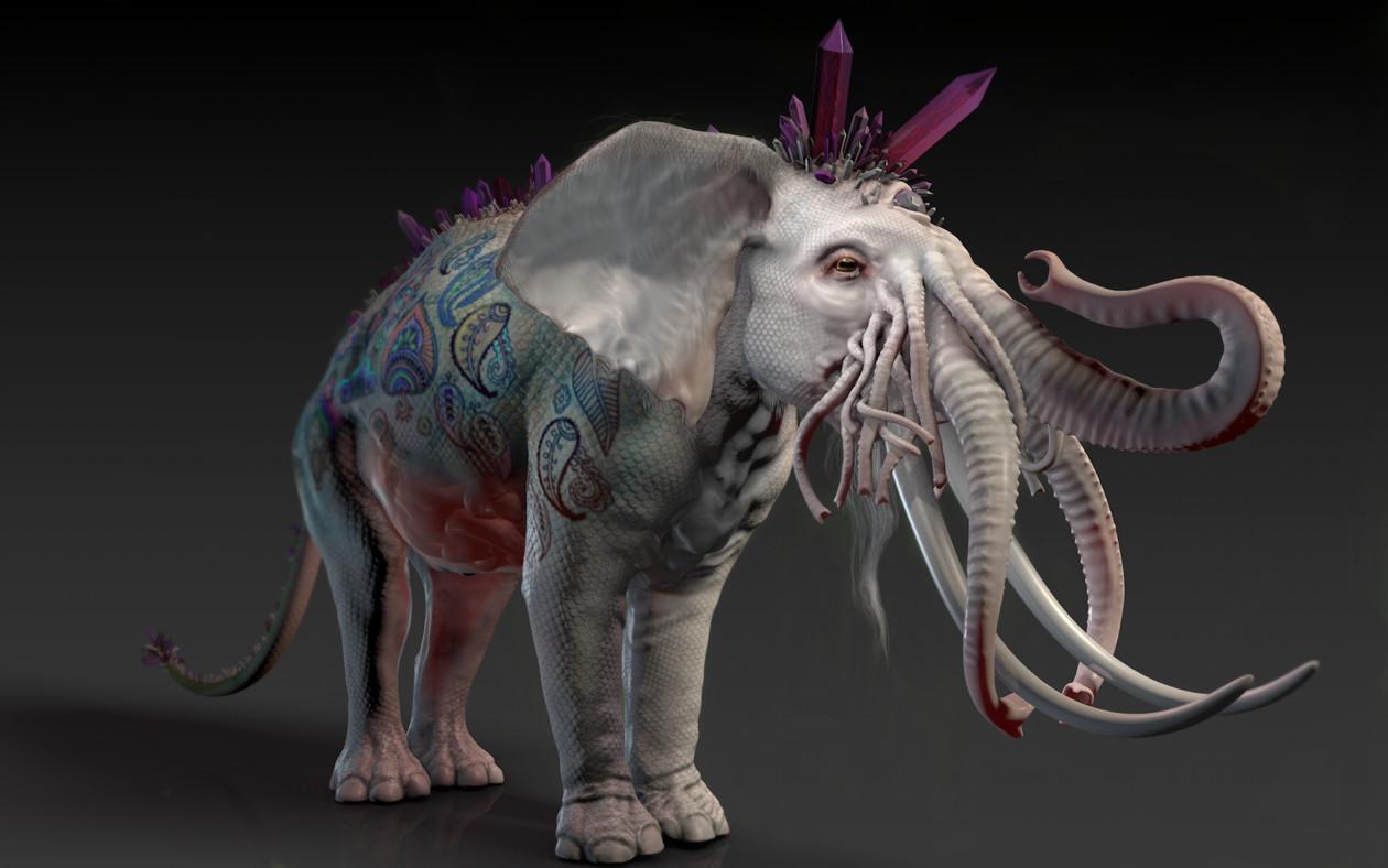 Dariusz andrulonis 01 elephantor trzyczwarte