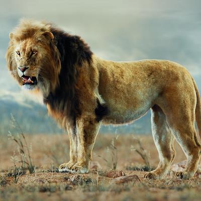 Tamas torok lion final