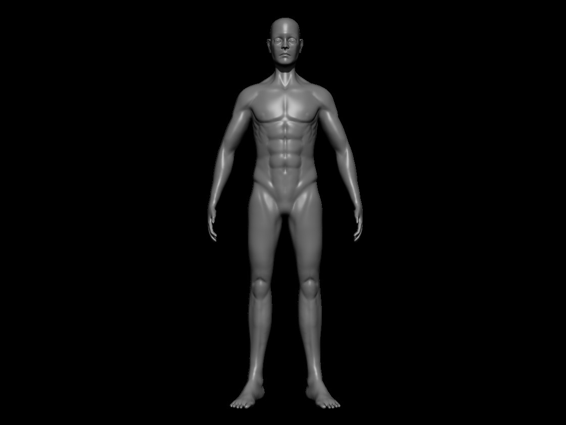 Ranbir Kang - Male Anatomy Study
