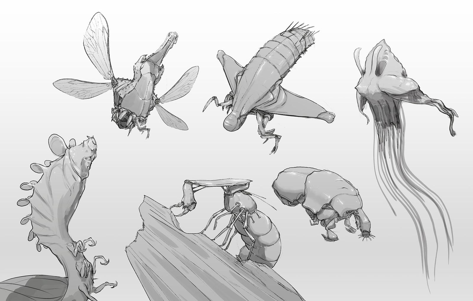 bugs doodles