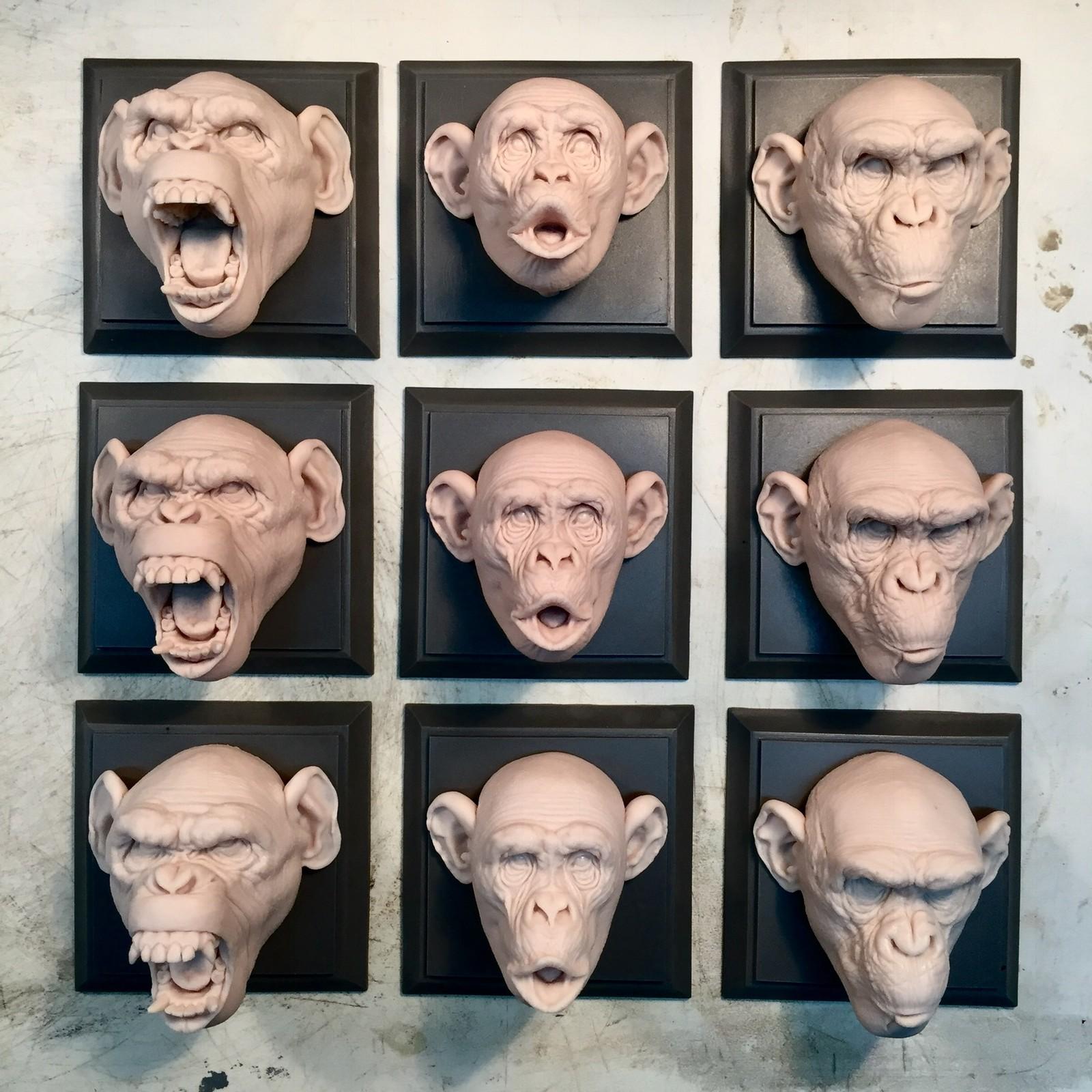 Monkey set/cast resin