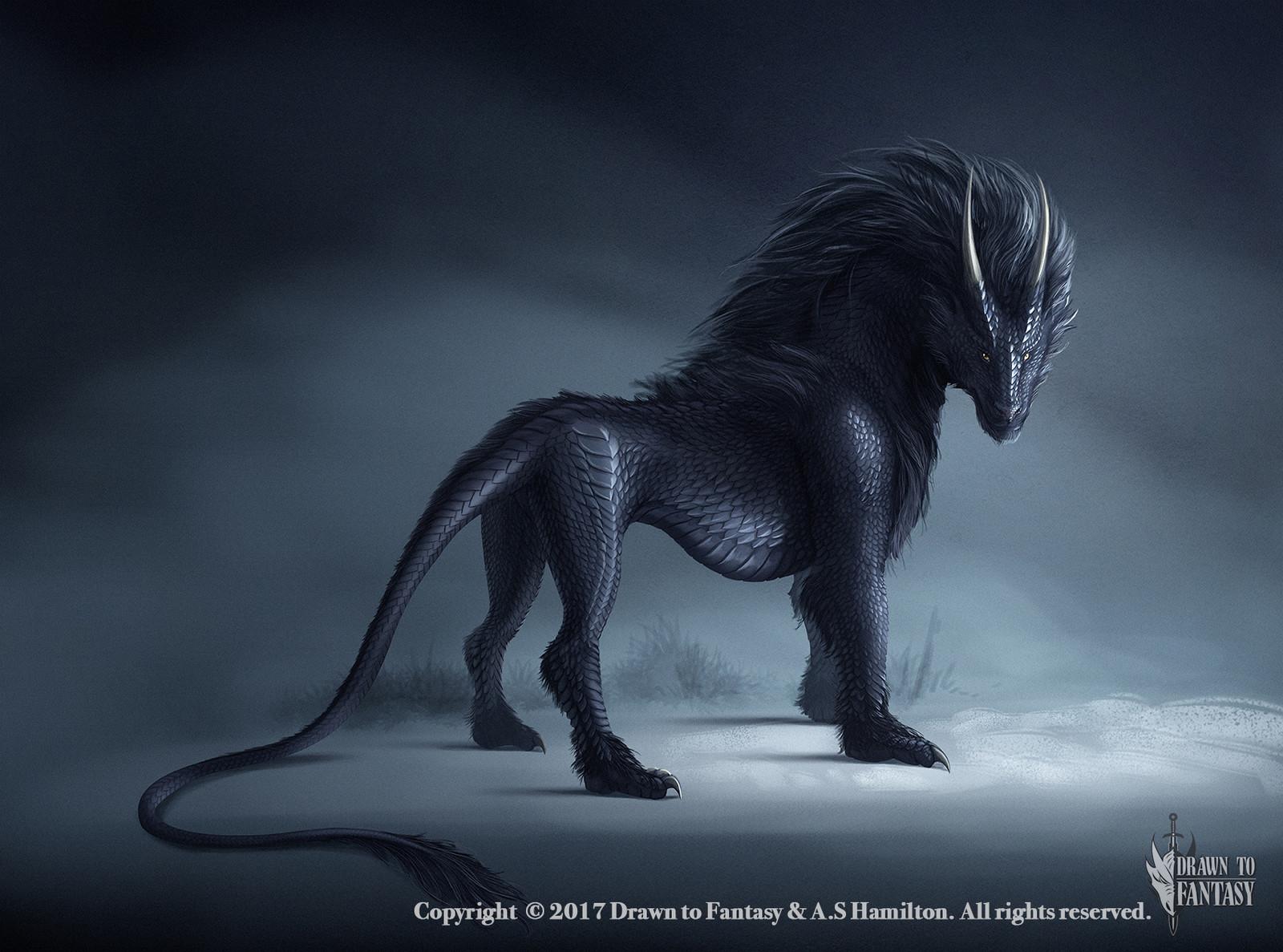 Baschia - Dragon Hybrid