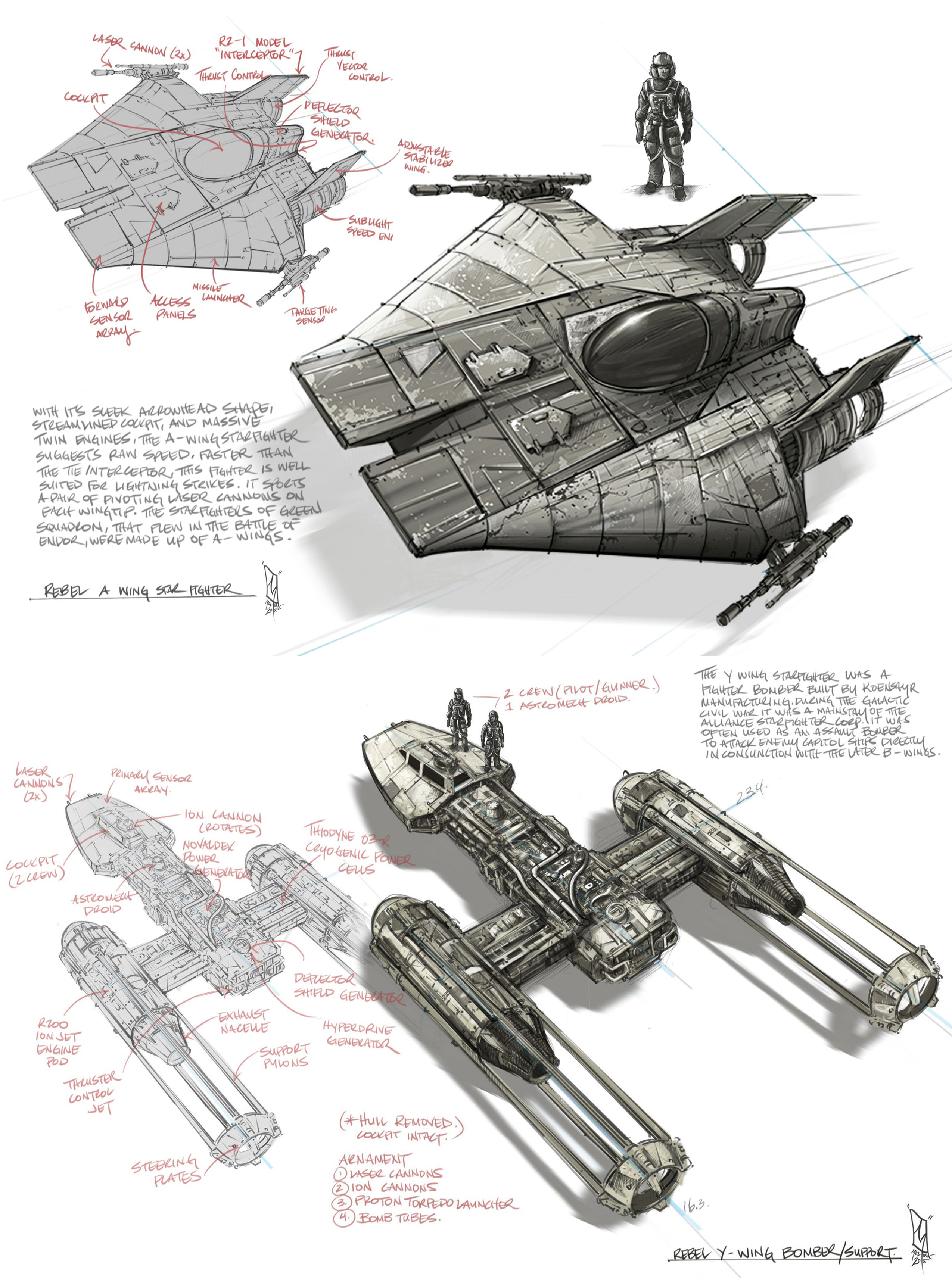 A wing and Y wing