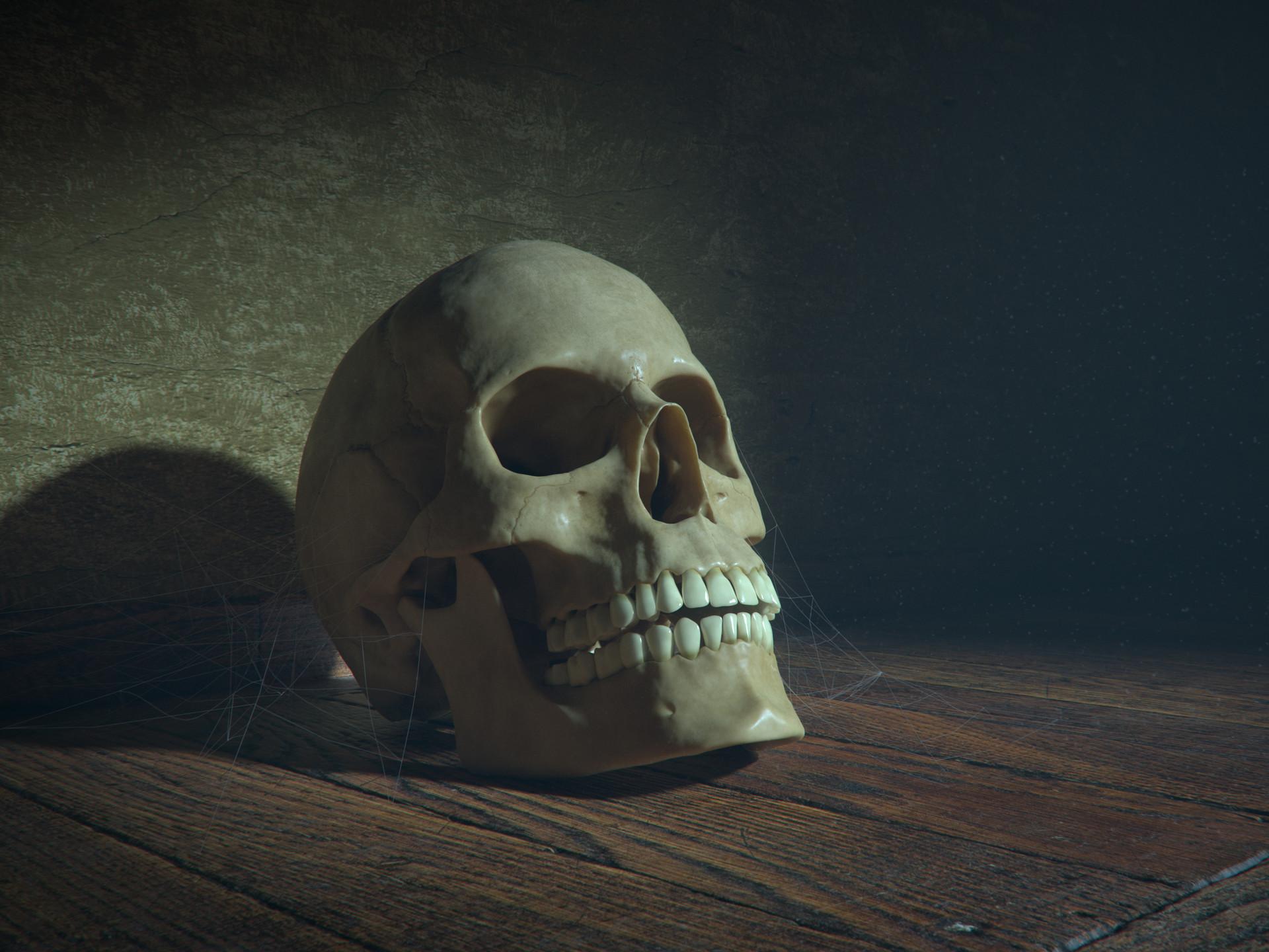 Gustav berg pedersen skull floor02