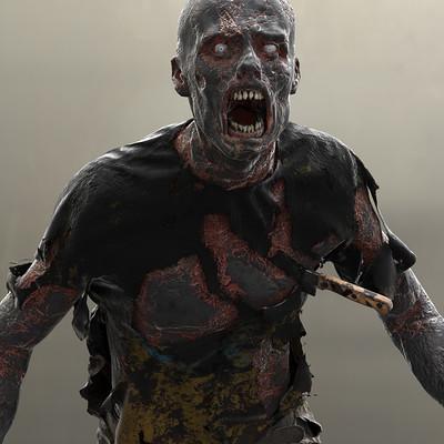 Michael weisheim beresin zombie burned 2