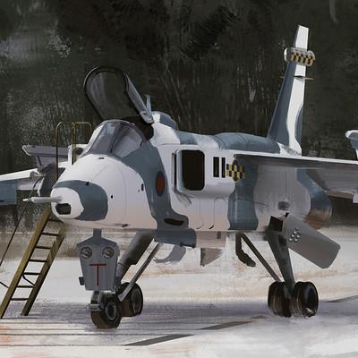 Adrian majkrzak raf jaguar runway