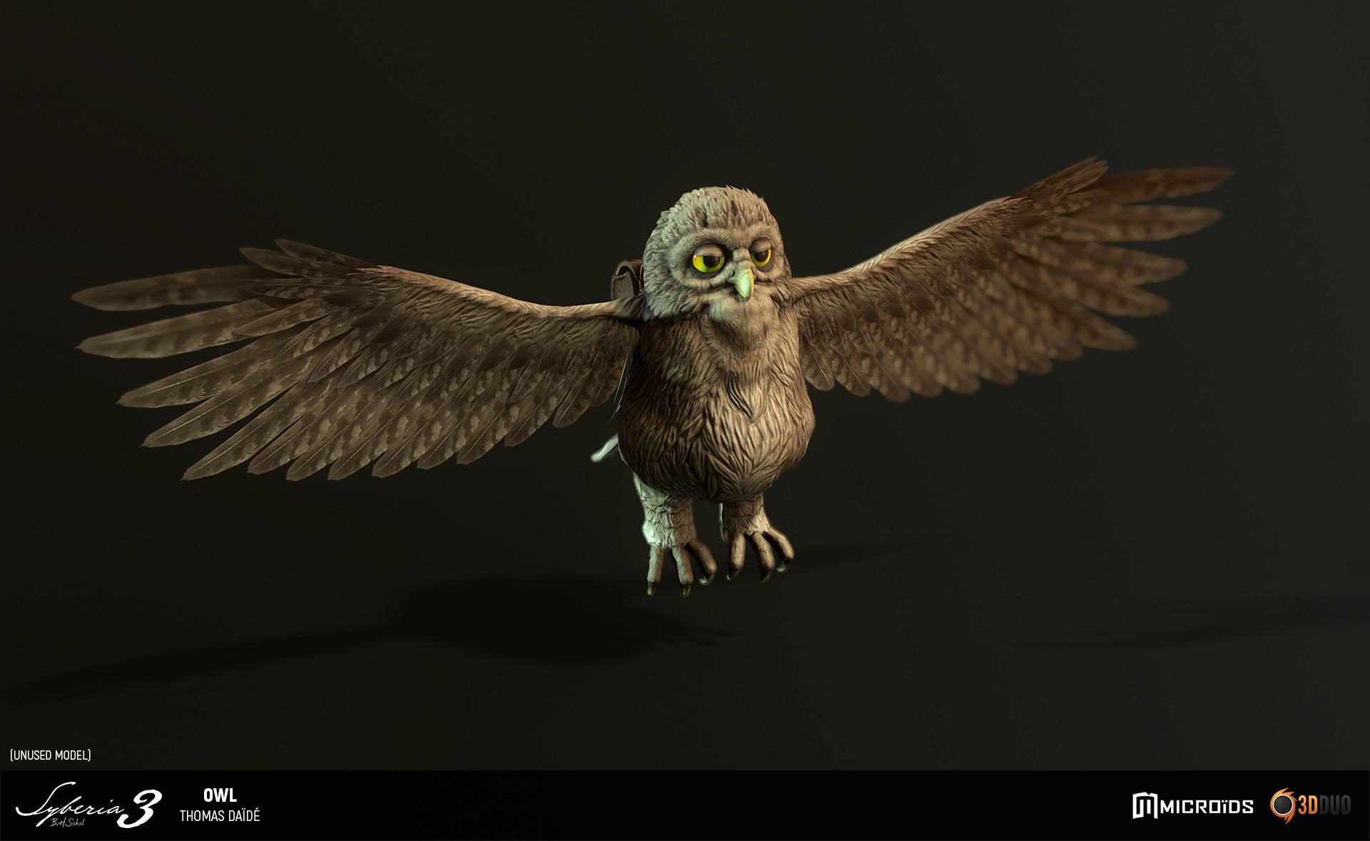 Thomas daide tdaide syb owl 06