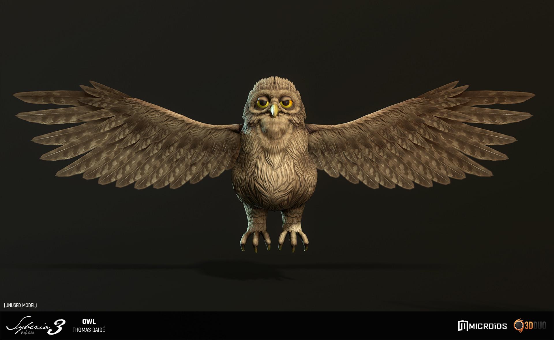 Thomas daide tdaide syb owl 05