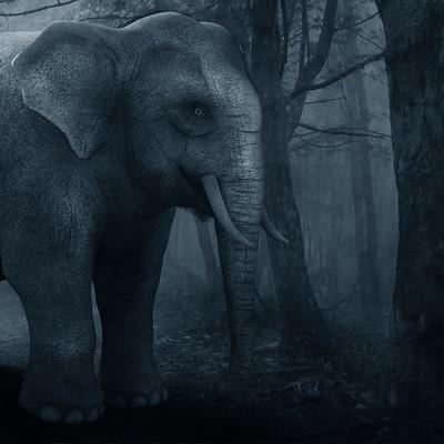 Surajit sen cg elephant surajitsen 22082017