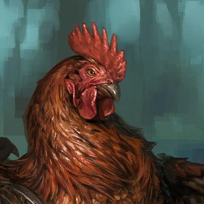 Taran fiddler rooster2