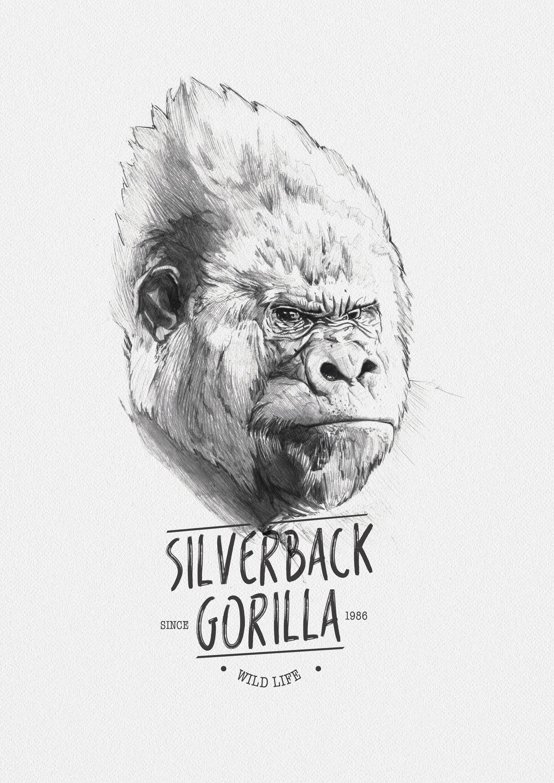 Miguel sastre gorilla