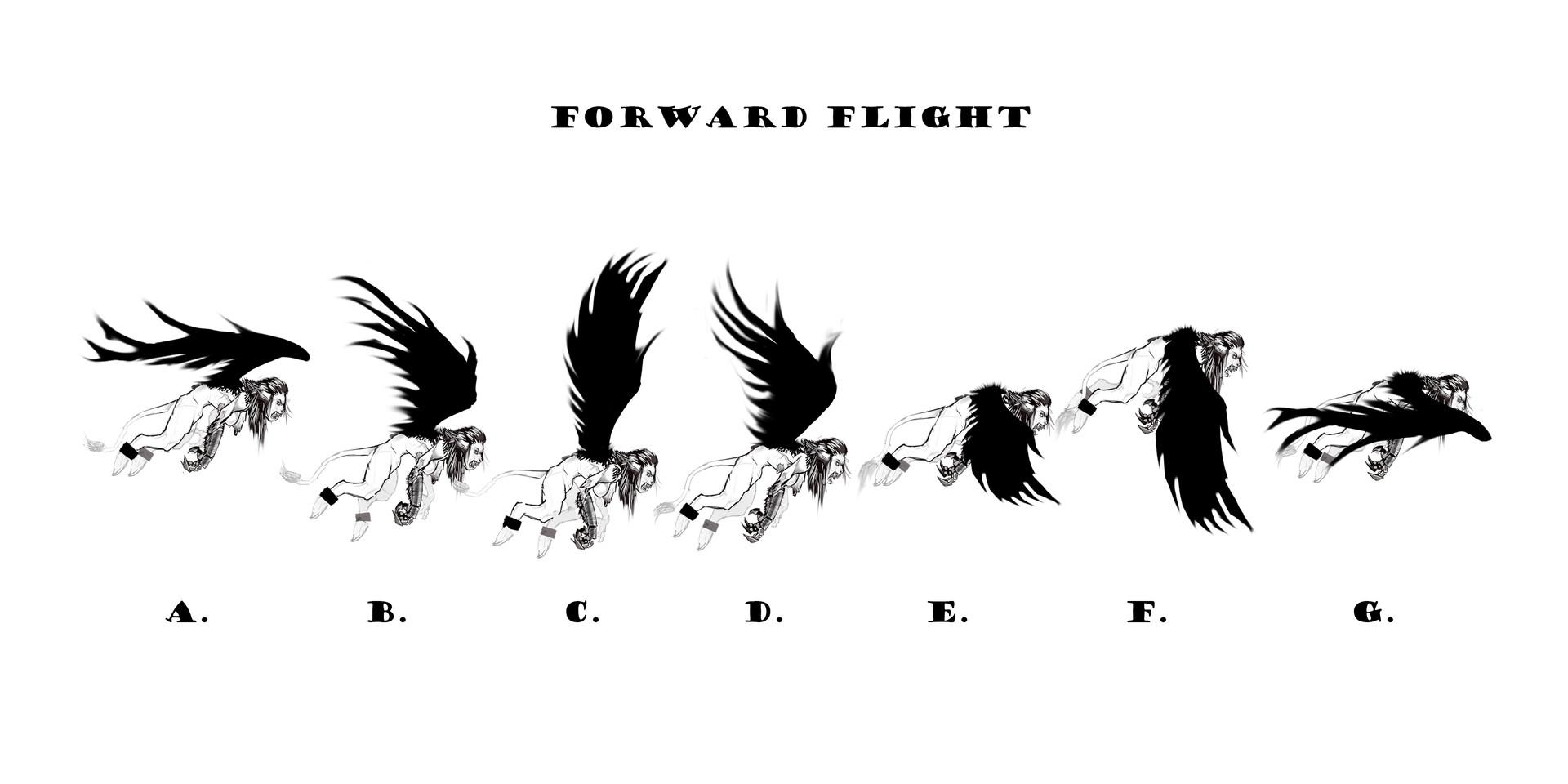 Forward Flight Animation Sprites