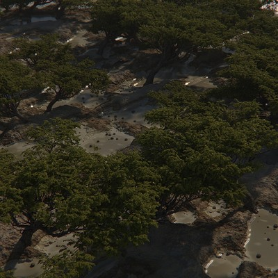 Felipe pesantez treesmtoa