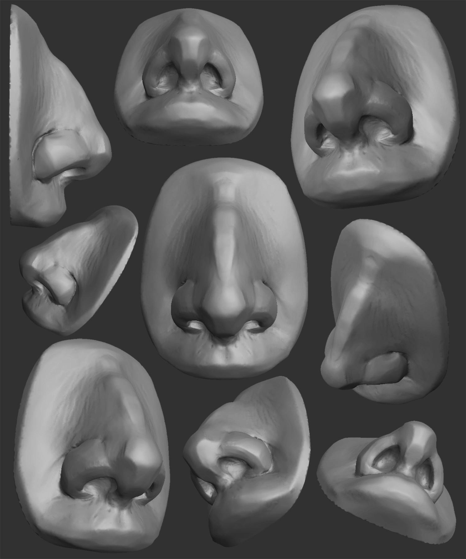 Sculpting The Nose - Speed Sculpt In Blender