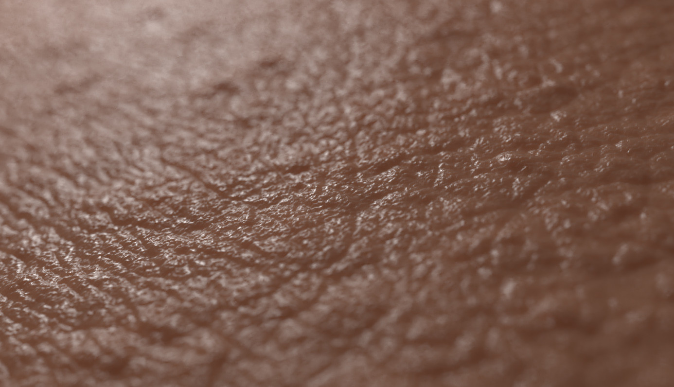 Francois rimasson skin2