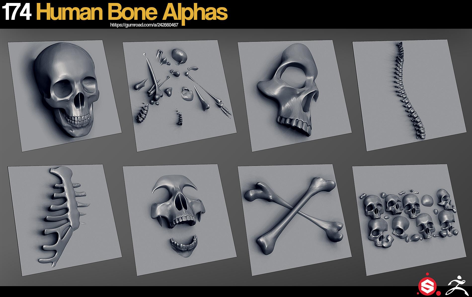 Jonas ronnegard humanbonealphas