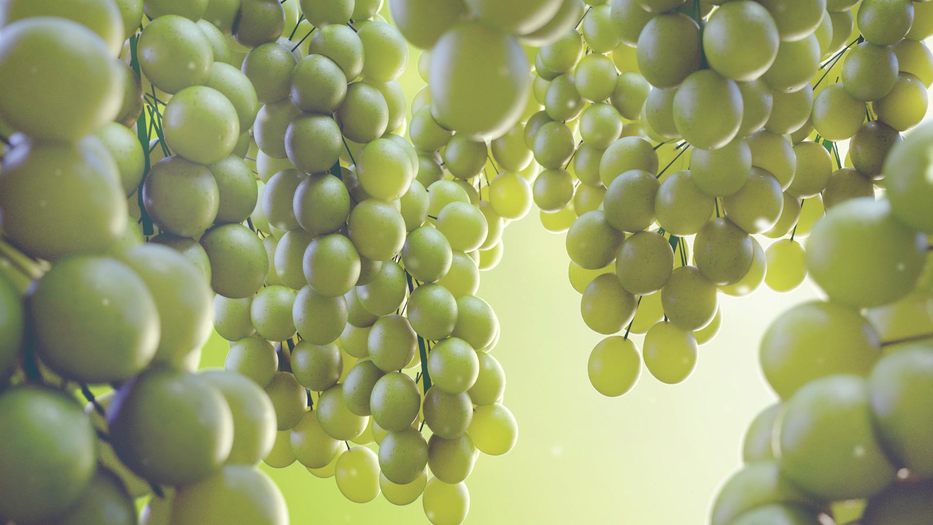 Rakan khamash grapes final redshift