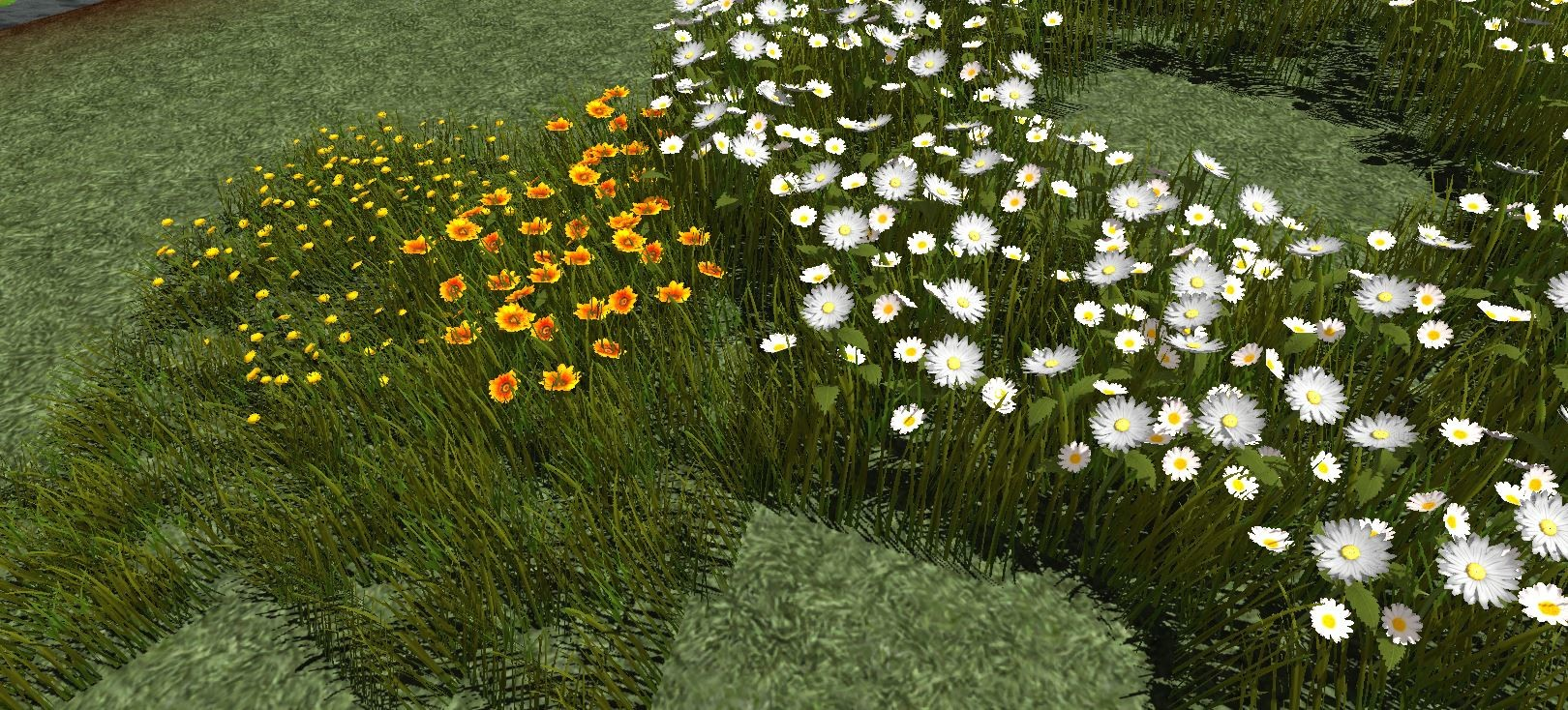 Elise ejtheartist motzny flowersandgrass