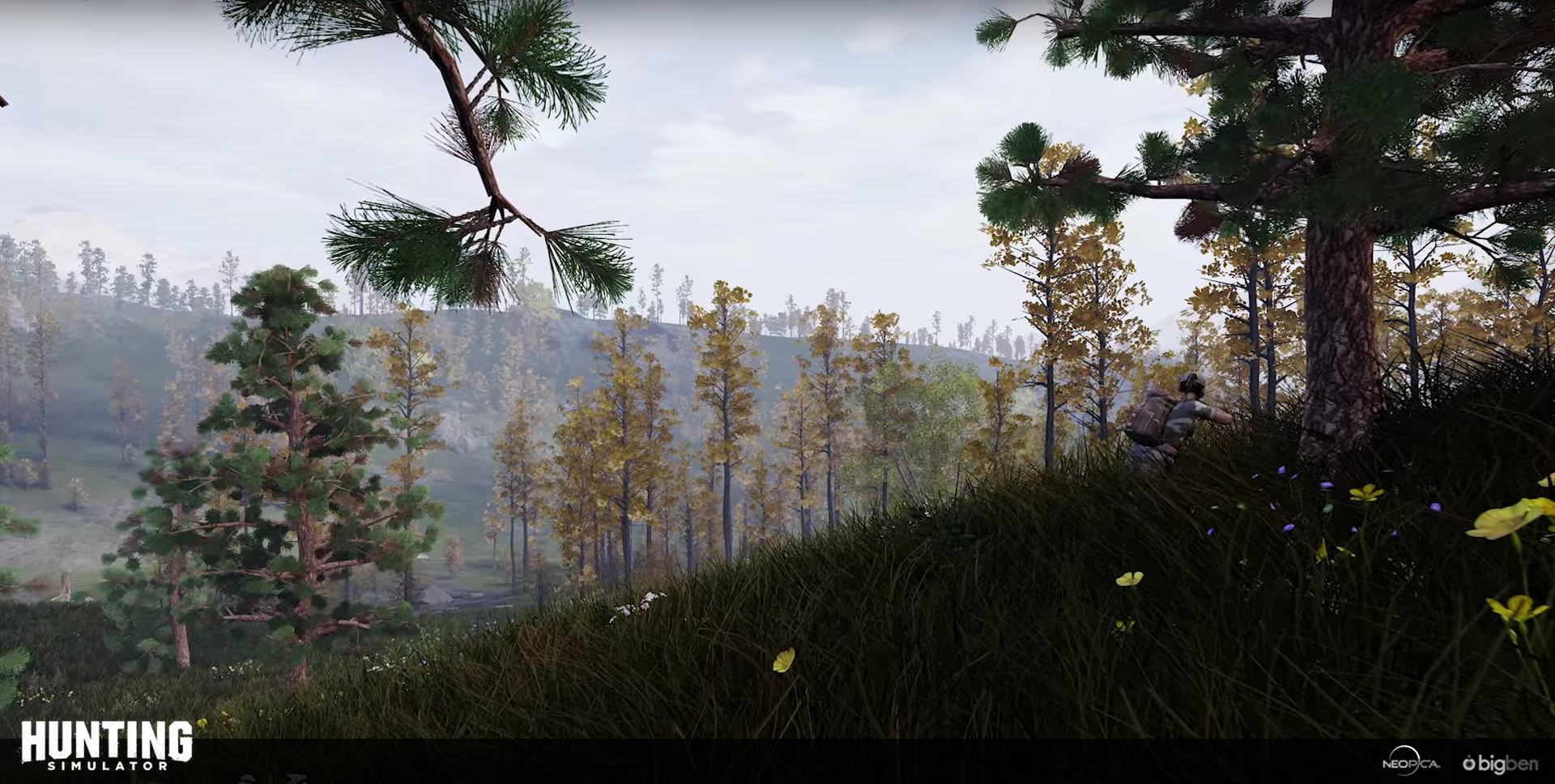 Flore vanackere huntingsimulator subalpine2
