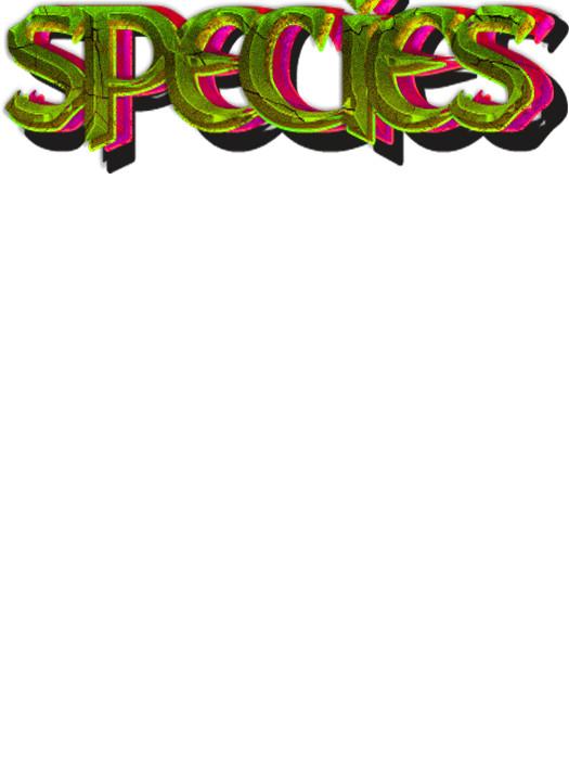 Blair kerr species proto logo