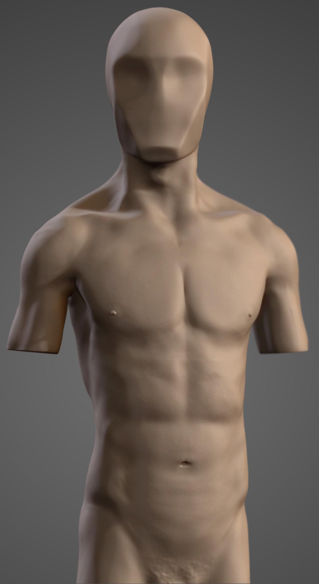 Vitor borsato study corpo front