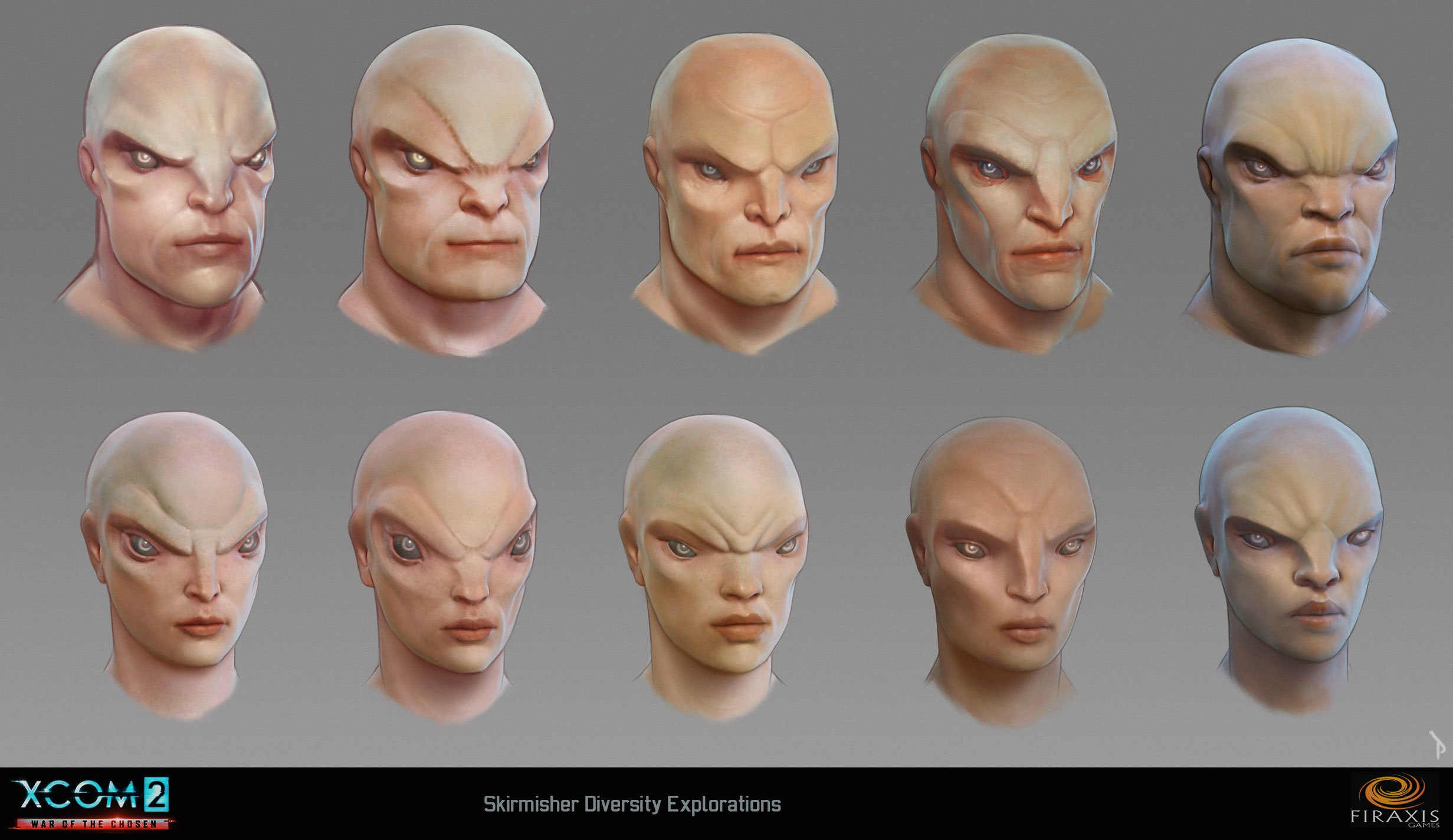 Skirmisher head diversity studies