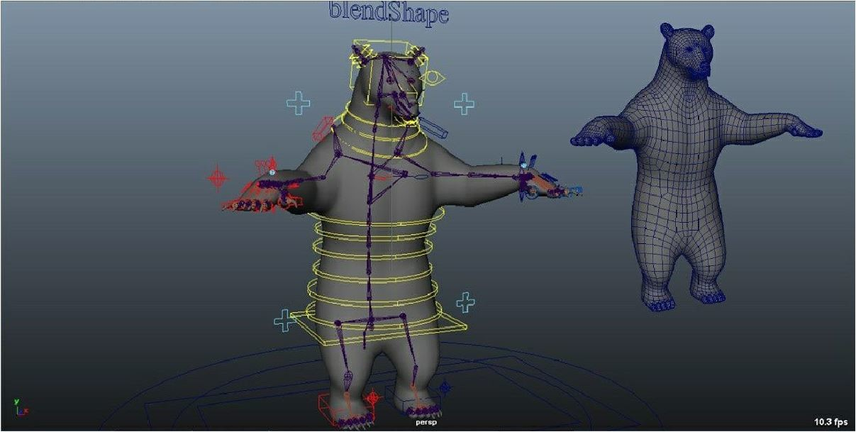 Grizzly bear Rig