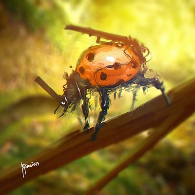 Benedick bana beetle lores