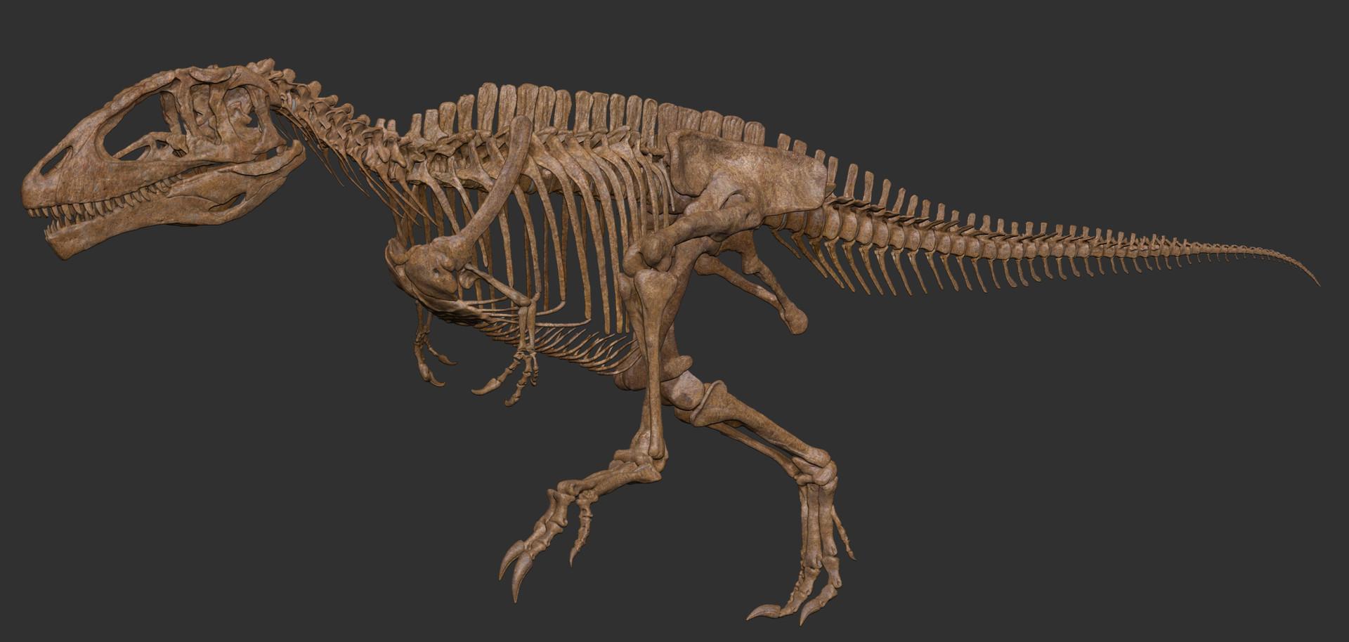 Vitamin Imagination Carcharodontosaurus Skeleton